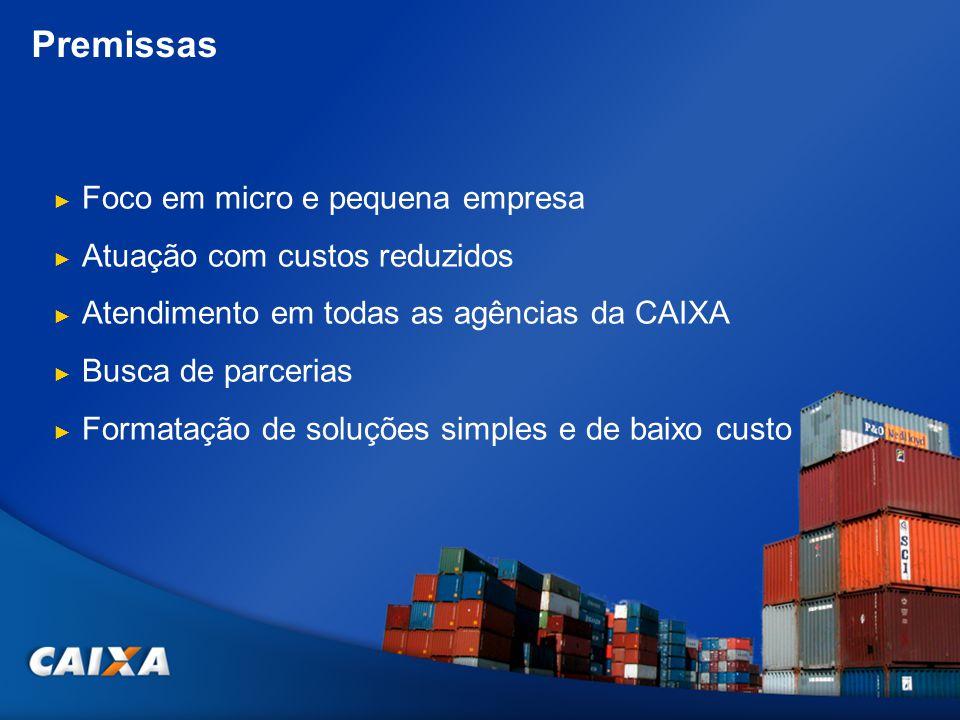 Premissas Foco em micro e pequena empresa Atuação com custos reduzidos Atendimento em todas as agências da CAIXA Busca de parcerias Formatação de solu