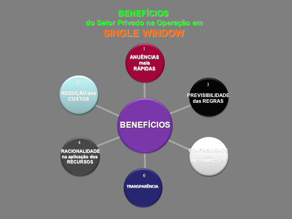 BENEFÍCIOS do Setor Privado na Operação em SINGLE WINDOW ANUÊNCIASmaisRÁPIDAS BENEFÍCIOS RACIONALIDADE na aplicação dos na aplicação dos RECURSOS CONFIABILIDADE das INFORMAÇÕES TRANSPARÊNCIA PREVISIBILIDADE das REGRAS das REGRAS REDUÇÃO dos REDUÇÃO dos CUSTOS 1 2 3 4 5 6