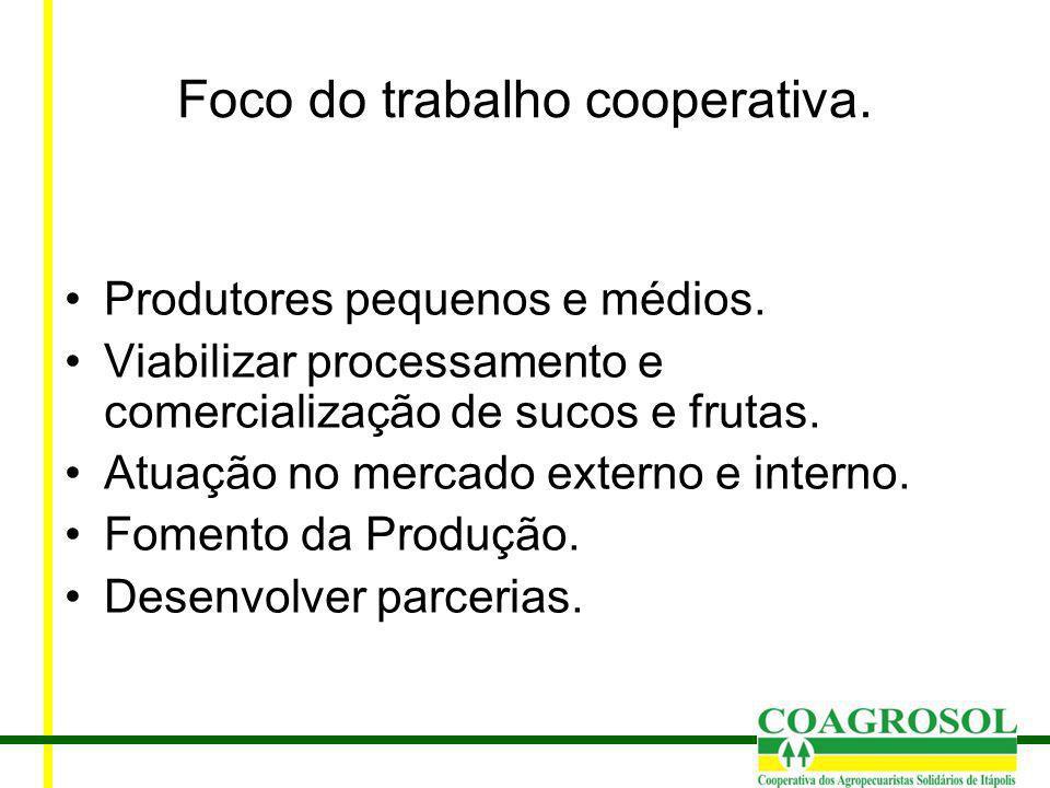 Foco do trabalho cooperativa. Produtores pequenos e médios. Viabilizar processamento e comercialização de sucos e frutas. Atuação no mercado externo e