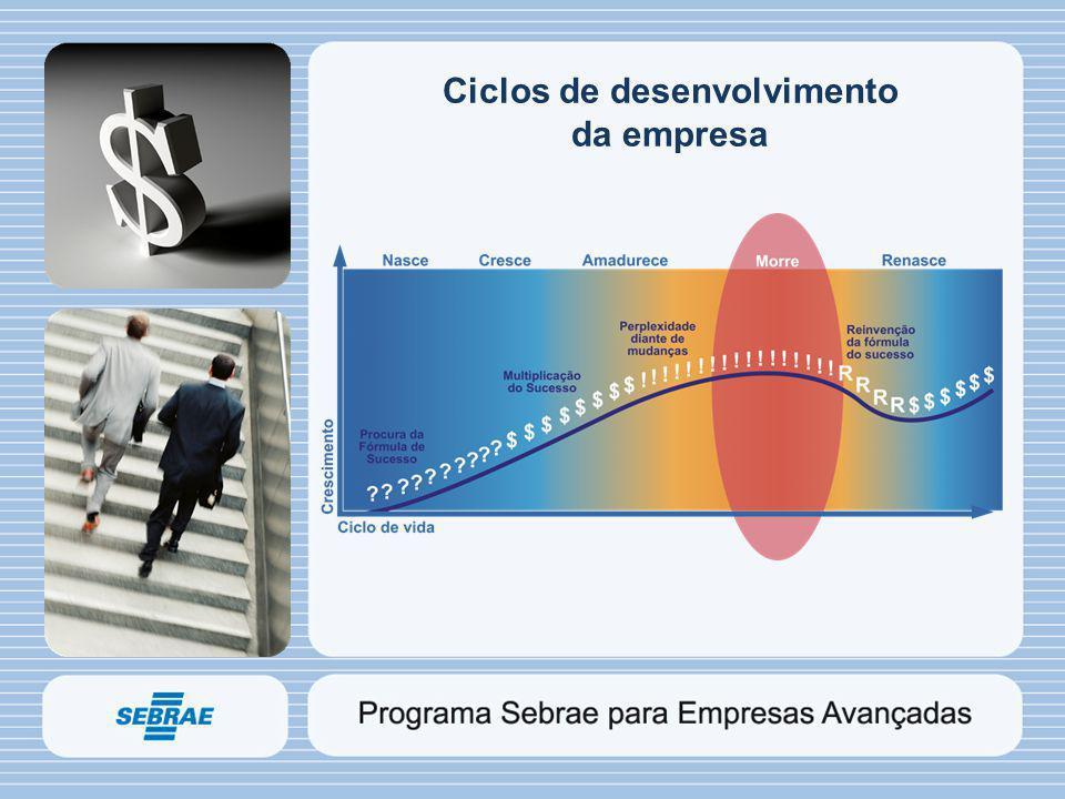 Ciclos de desenvolvimento da empresa