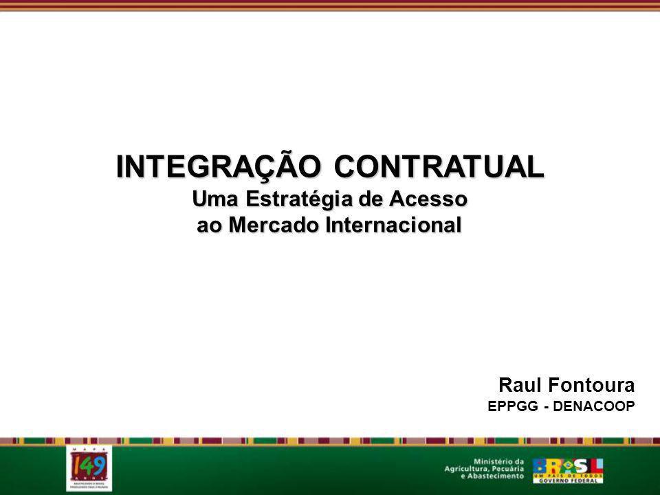 INTEGRAÇÃO CONTRATUAL Uma Estratégia de Acesso ao Mercado Internacional Raul Fontoura EPPGG - DENACOOP