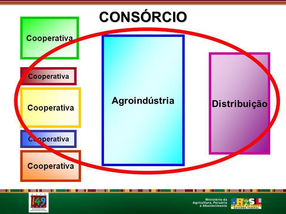CONSÓRCIO conceito Cooperativa Agroindústria Distribuição CONSÓRCIO