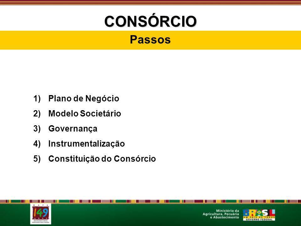 CONSÓRCIO Passos 1)Plano de Negócio 2)Modelo Societário 3)Governança 4)Instrumentalização 5)Constituição do Consórcio