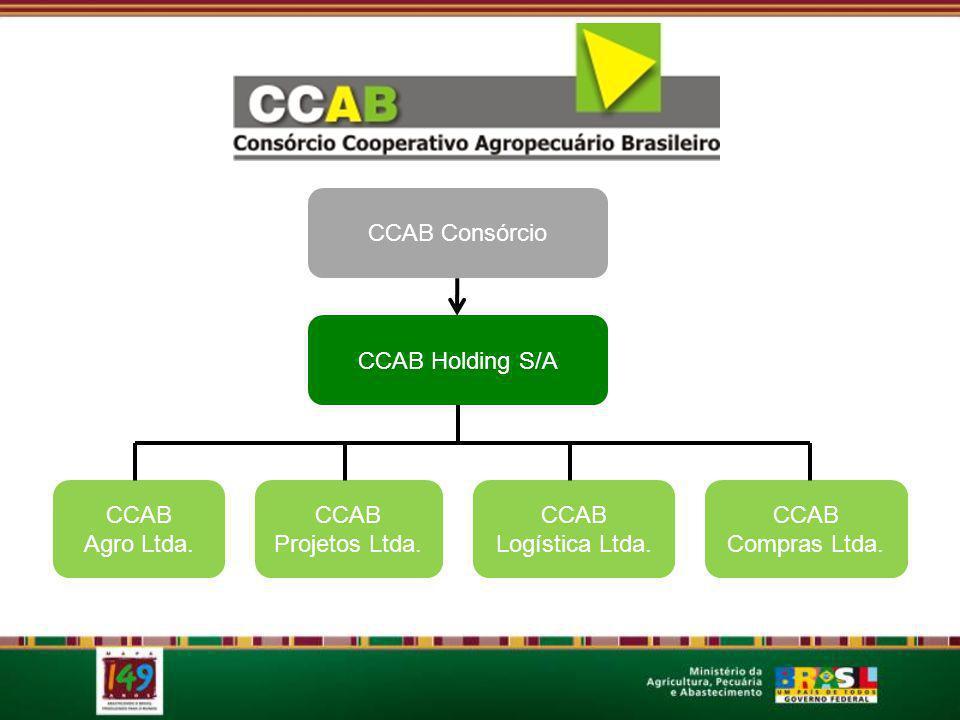 CCAB Consórcio CCAB Holding S/A CCAB Agro Ltda. CCAB Projetos Ltda. CCAB Compras Ltda. CCAB Logística Ltda.