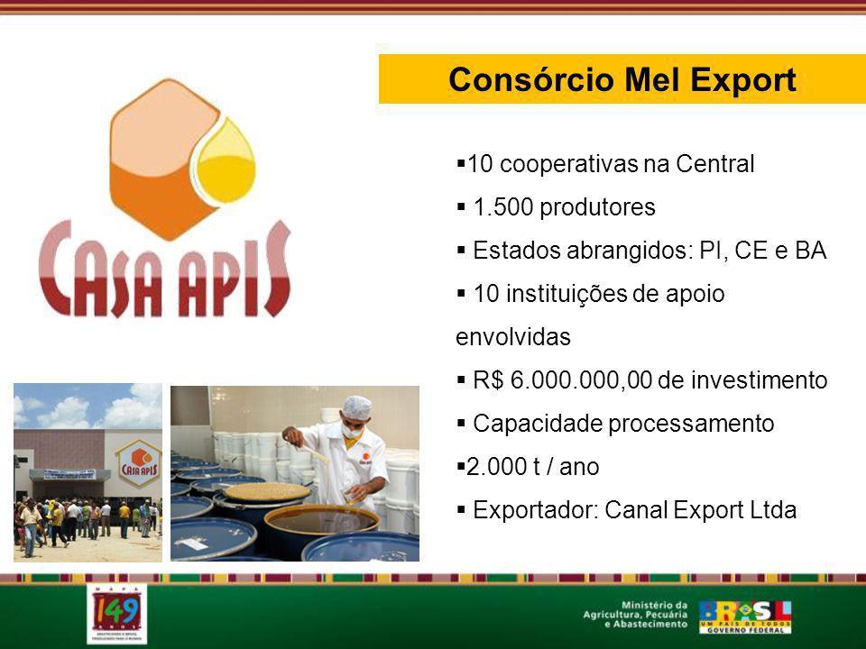 Consórcio Mel Export 10 cooperativas na Central 1.500 produtores Estados abrangidos: PI, CE e BA 10 instituições de apoio envolvidas R$ 6.000.000,00 d