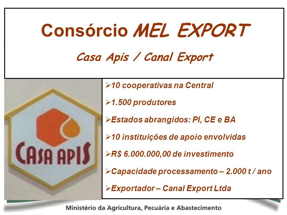 10 cooperativas na Central 1.500 produtores Estados abrangidos: PI, CE e BA 10 instituições de apoio envolvidas R$ 6.000.000,00 de investimento Capaci