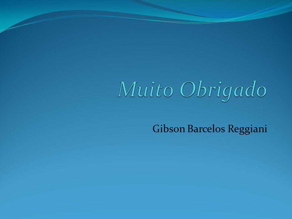 Gibson Barcelos Reggiani