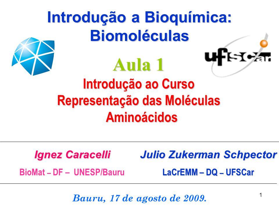 1 Ignez Caracelli BioMat – DF – UNESP/Bauru Bauru, 17 de agosto de 2009. Aula 1 Introdução ao Curso Representação das Moléculas Aminoácidos Aminoácido