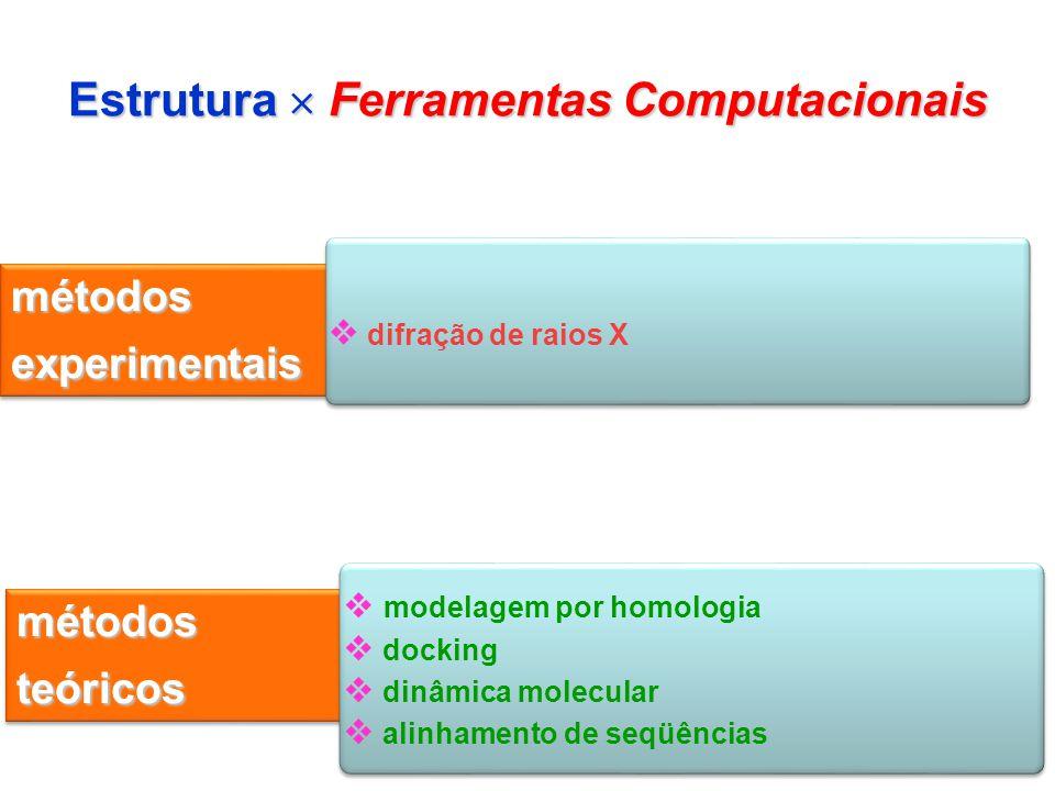 IC13 Estrutura Ferramentas Computacionais métodos experimentais difração de raios X métodos teóricos modelagem por homologia docking dinâmica molecula