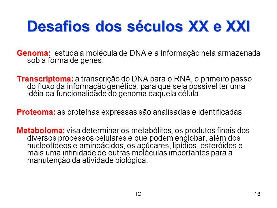 IC18 Desafios dos séculos XX e XXI Genoma: Genoma: estuda a molécula de DNA e a informação nela armazenada sob a forma de genes. Transcriptoma: Transc