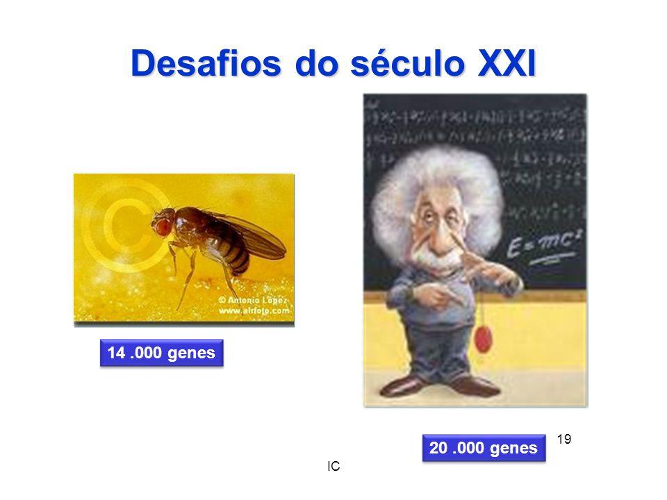 IC 19 Desafios do século XXI 14.000 genes 20.000 genes