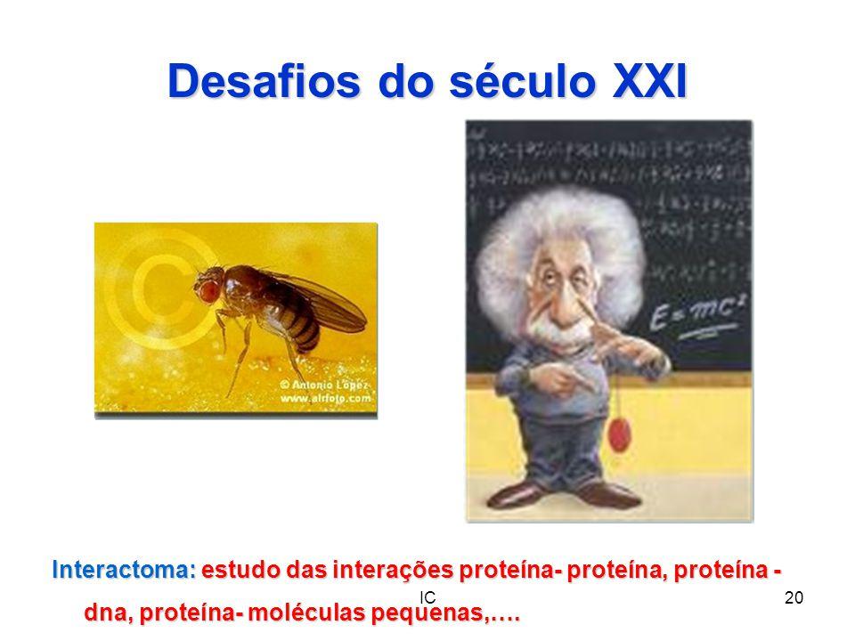 IC20 Desafios do século XXI Interactoma: estudo das interações proteína- proteína, proteína - dna, proteína- moléculas pequenas,….