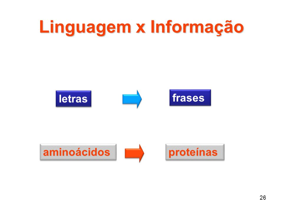 26 Linguagem x Informação letras frases aminoácidosaminoácidosproteínasproteínas