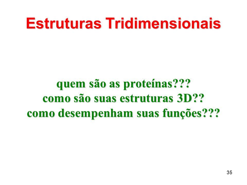 35 Estruturas Tridimensionais quem são as proteínas??? como são suas estruturas 3D?? como desempenham suas funções???