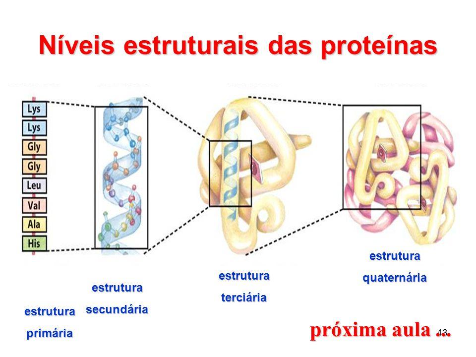 43 Níveis estruturais das proteínas estrutura primária estrutura secundária estrutura terciária estruturaquaternária próxima aula...