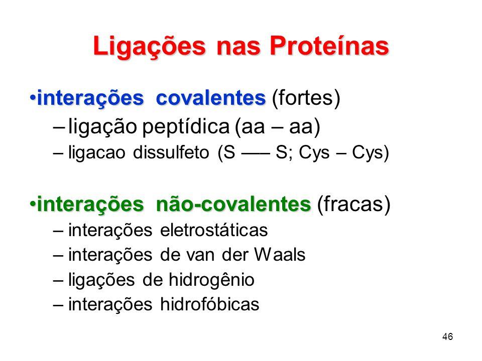 46 Ligações nas Proteínas interações covalentesinterações covalentes (fortes) –ligação peptídica (aa – aa) –ligacao dissulfeto (S – S; Cys – Cys) inte