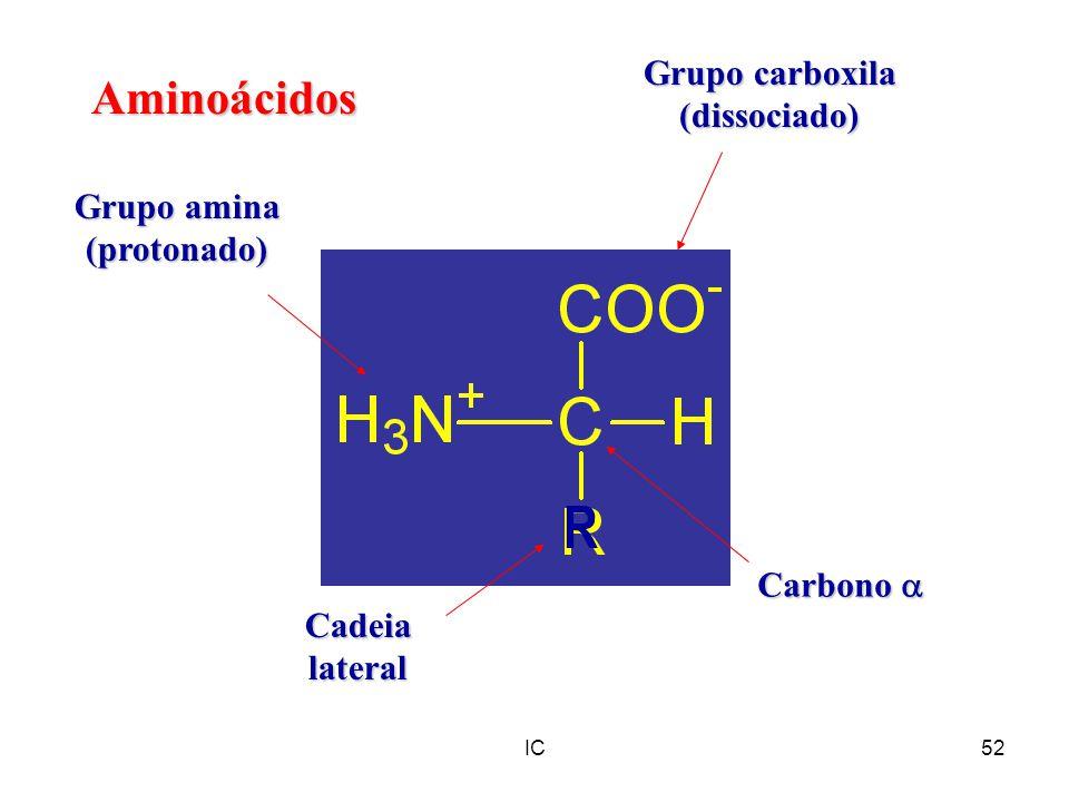 IC52 Aminoácidos Grupo carboxila (dissociado) Grupo amina (protonado) Cadeialateral Carbono Carbono R