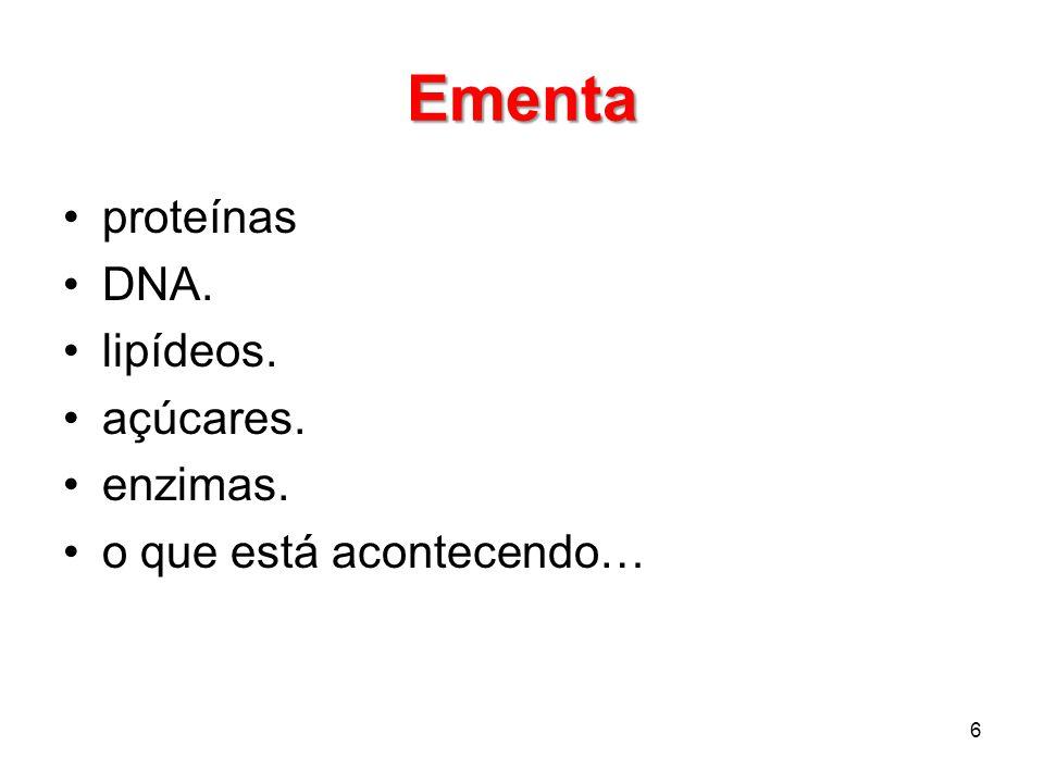 Ementa proteínas DNA. lipídeos. açúcares. enzimas. o que está acontecendo… 6