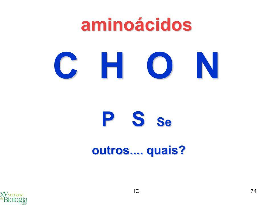IC74 aminoácidos C H O N P S Se outros.... quais?