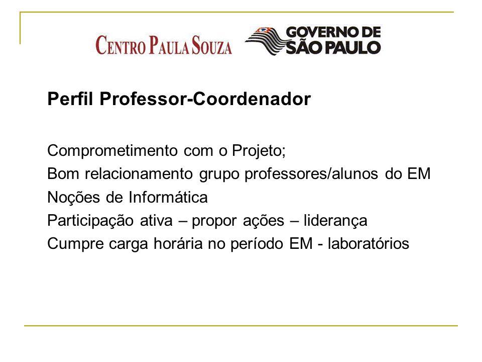 Perfil Professor-Coordenador Comprometimento com o Projeto; Bom relacionamento grupo professores/alunos do EM Noções de Informática Participação ativa