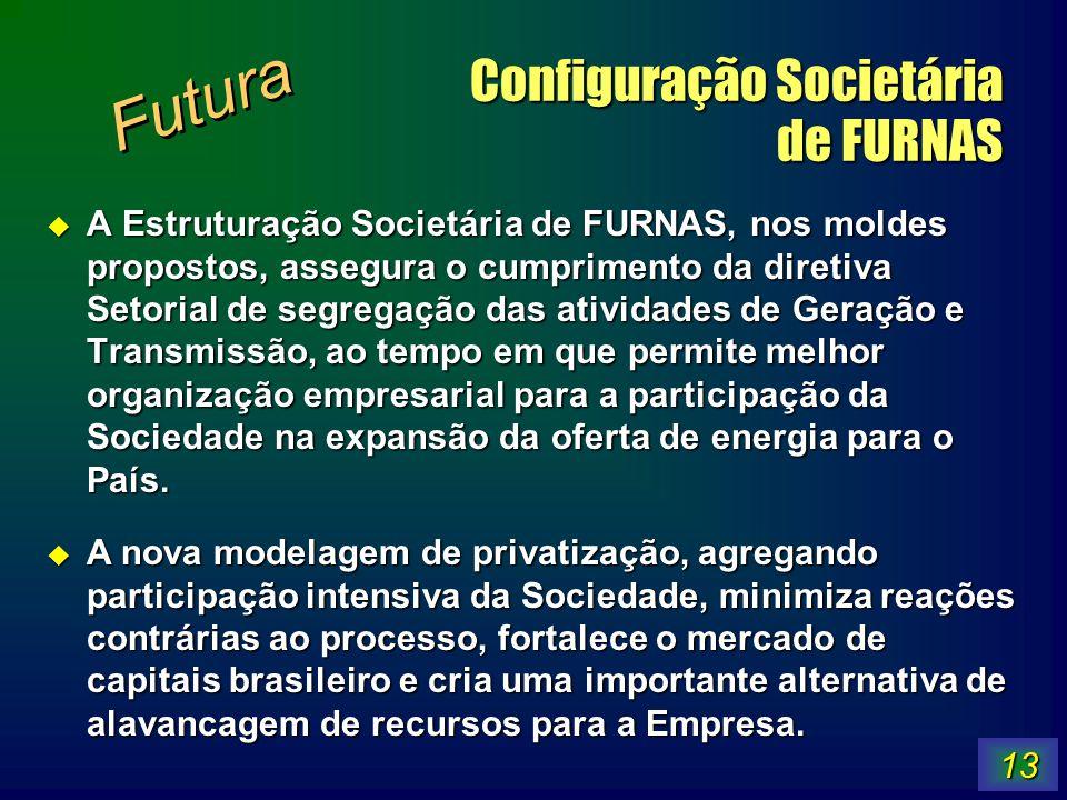 13 Configuração Societária de FURNAS A Estruturação Societária de FURNAS, nos moldes propostos, assegura o cumprimento da diretiva Setorial de segrega