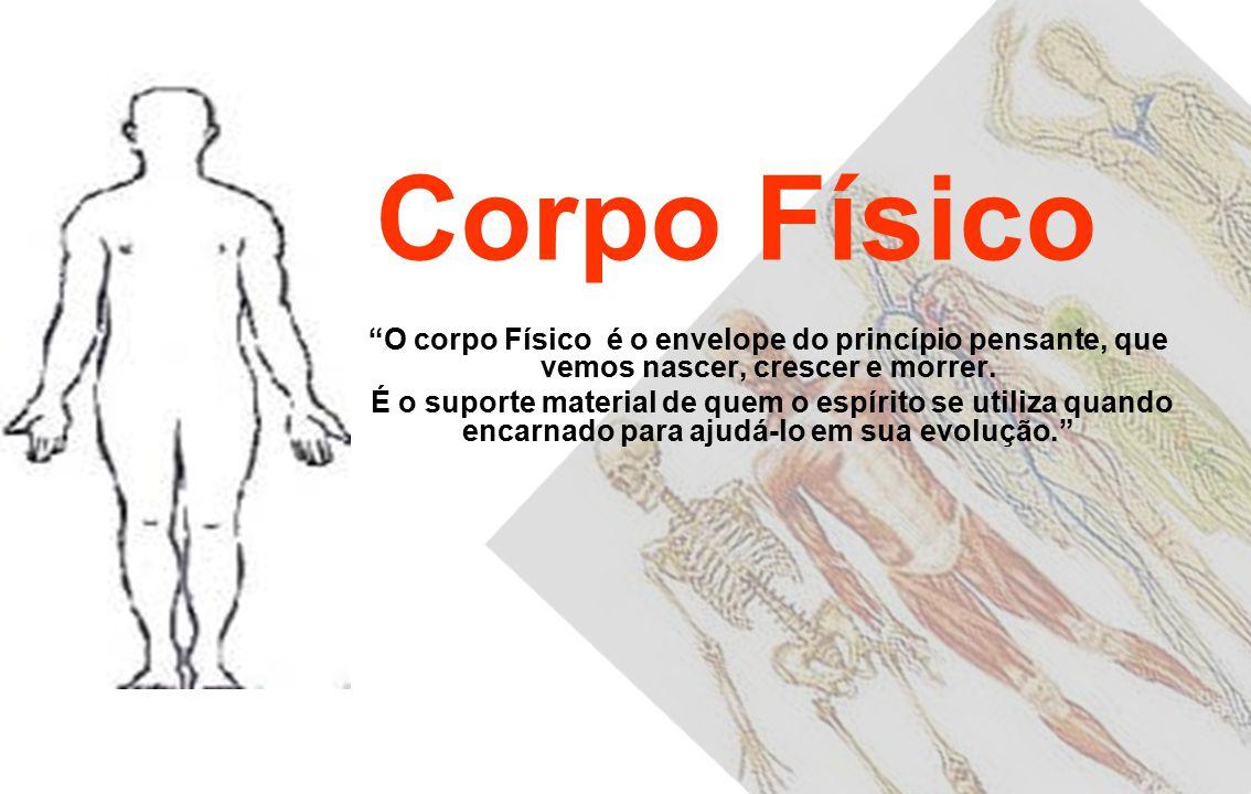 Classificação dos Corpos 1.Corpo Físico 2.Corpo Etérico ou Duplo Etérico 3.Corpo Astral ou Perispírito 4.Corpo Mental Inferior 5.Corpo Mental Superior 6.
