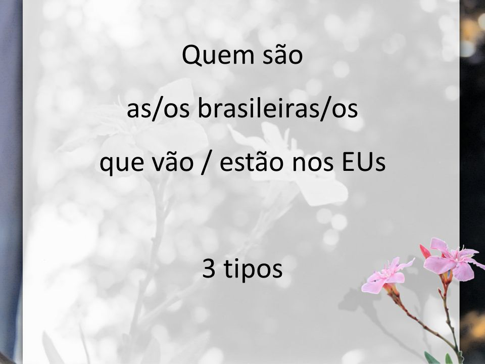 Quem são as/os brasileiras/os que vão / estão nos EUs 3 tipos
