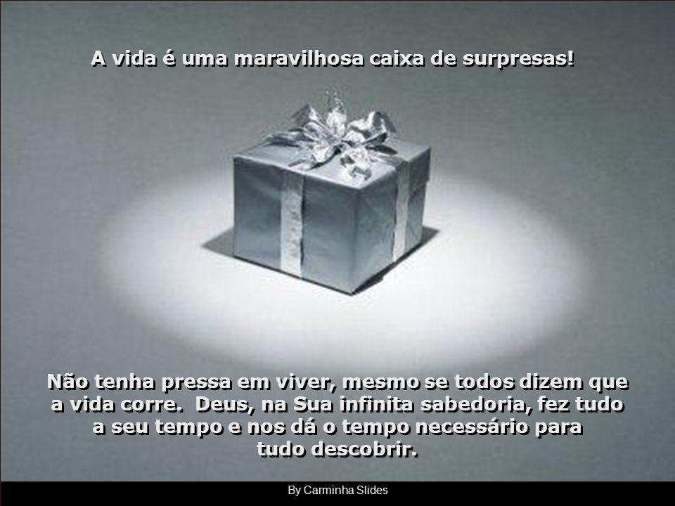 By Carminha Slides A vida é uma maravilhosa caixa de surpresas.