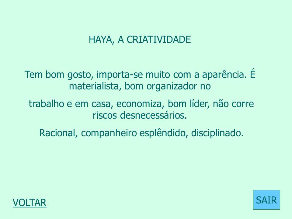 HAYA, A CRIATIVIDADE Tem bom gosto, importa-se muito com a aparência. É materialista, bom organizador no trabalho e em casa, economiza, bom líder, não