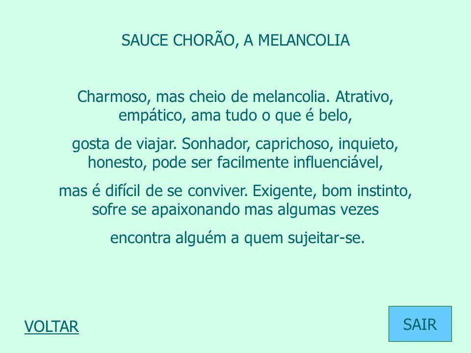 SAUCE CHORÃO, A MELANCOLIA Charmoso, mas cheio de melancolia. Atrativo, empático, ama tudo o que é belo, gosta de viajar. Sonhador, caprichoso, inquie