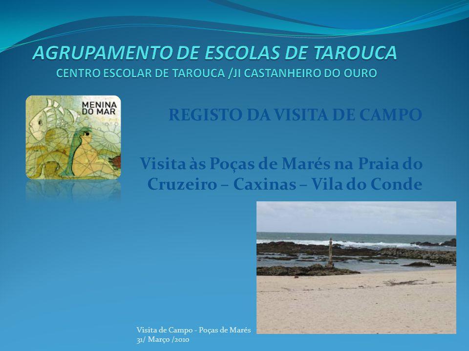 REGISTO DA VISITA DE CAMPO Visita às Poças de Marés na Praia do Cruzeiro – Caxinas – Vila do Conde Visita de Campo - Poças de Marés 31/ Março /2010