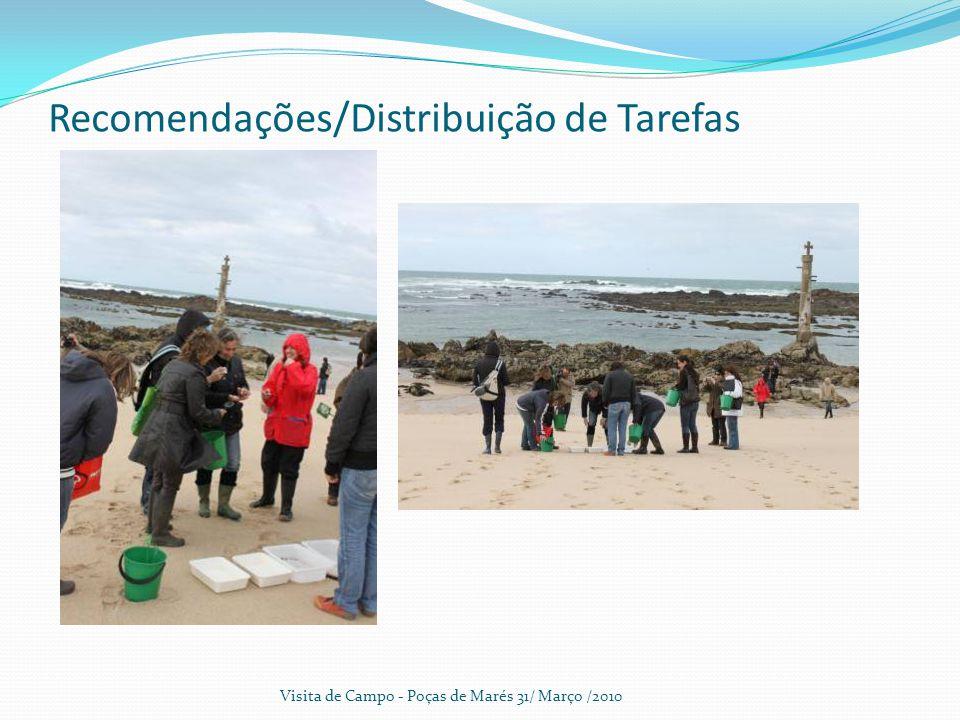 Recomendações/Distribuição de Tarefas Visita de Campo - Poças de Marés 31/ Março /2010