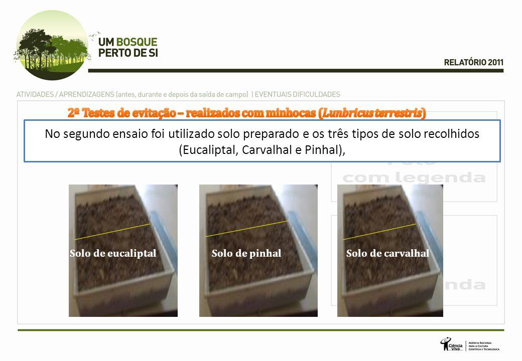 No segundo ensaio foi utilizado solo preparado e os três tipos de solo recolhidos (Eucaliptal, Carvalhal e Pinhal), Solo de eucaliptalSolo de pinhalSo