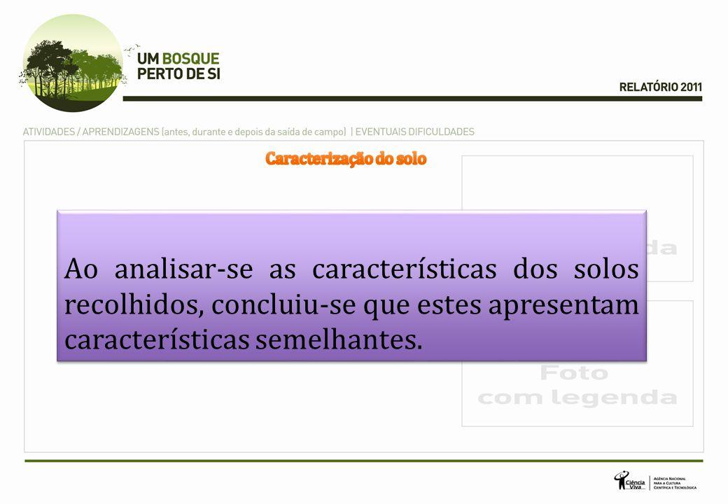 Ao analisar-se as características dos solos recolhidos, concluiu-se que estes apresentam características semelhantes.