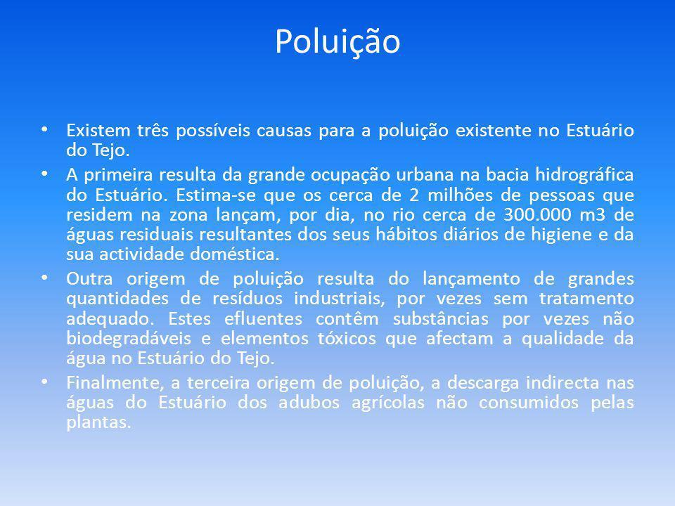 Poluição Existem três possíveis causas para a poluição existente no Estuário do Tejo.