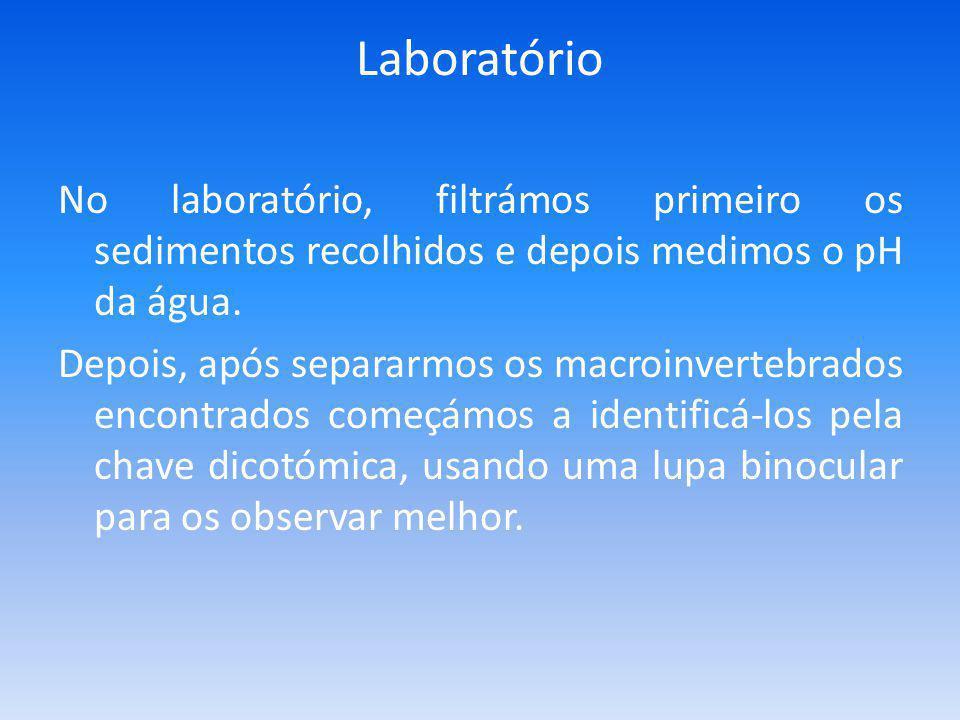 Laboratório No laboratório, filtrámos primeiro os sedimentos recolhidos e depois medimos o pH da água.