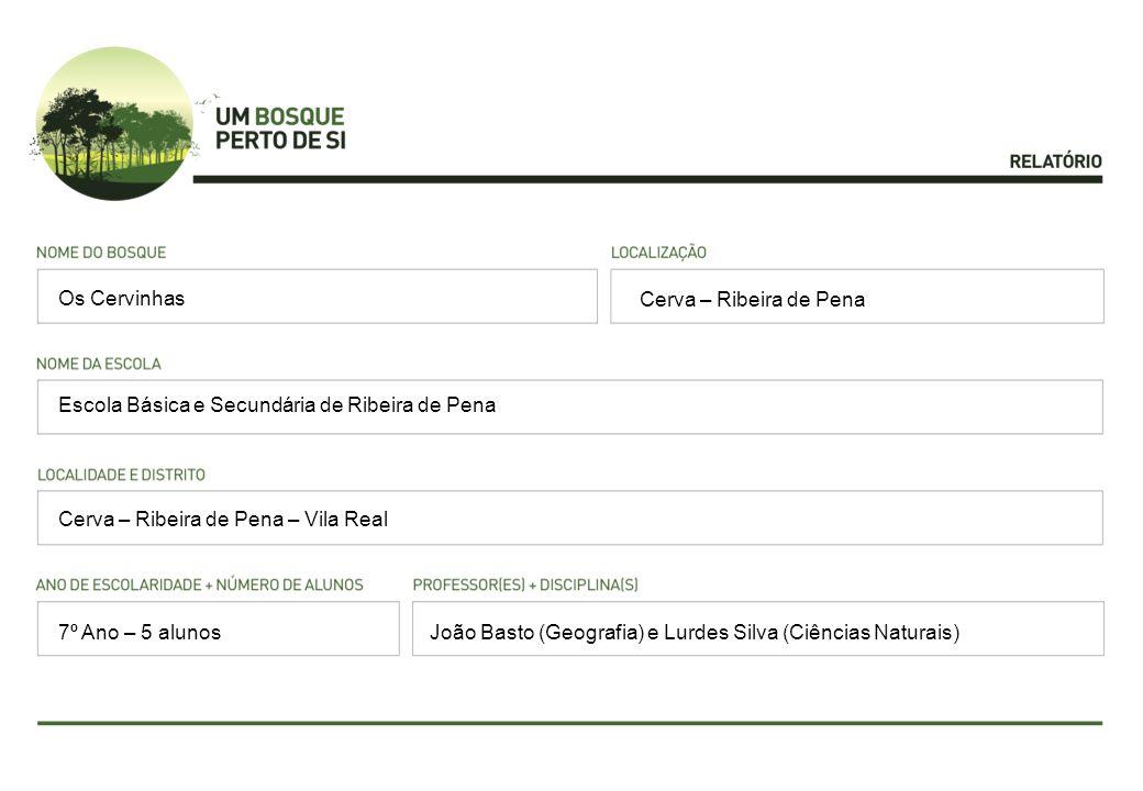 Cerva – Ribeira de Pena Escola Básica e Secundária de Ribeira de Pena Cerva – Ribeira de Pena – Vila Real João Basto (Geografia) e Lurdes Silva (Ciênc