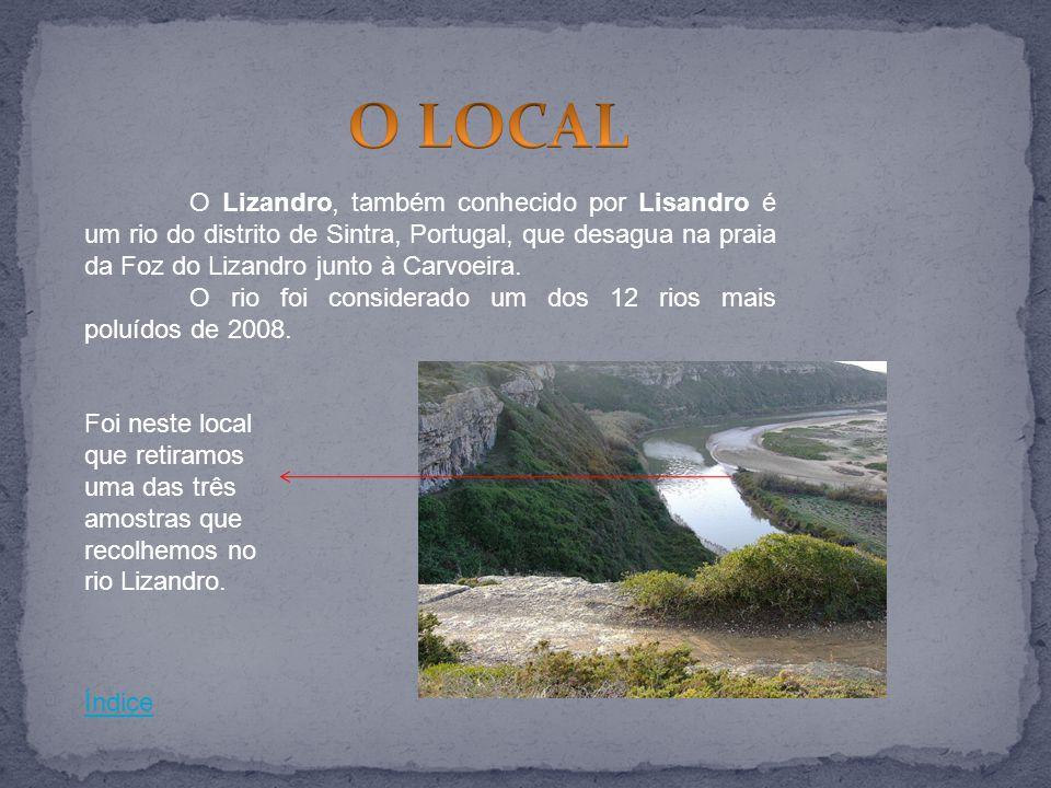 O Lizandro, também conhecido por Lisandro é um rio do distrito de Sintra, Portugal, que desagua na praia da Foz do Lizandro junto à Carvoeira. O rio f