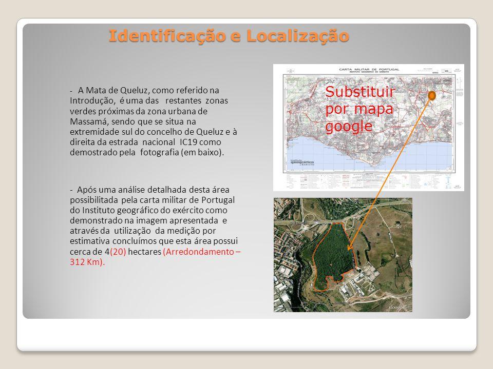 Identificação e Localização - A Mata de Queluz, como referido na Introdução, é uma das restantes zonas verdes próximas da zona urbana de Massamá, sendo que se situa na extremidade sul do concelho de Queluz e à direita da estrada nacional IC19 como demostrado pela fotografia (em baixo).
