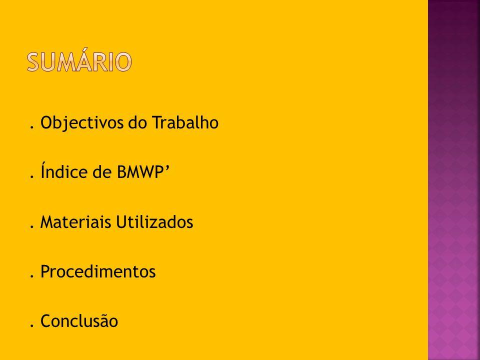 . Objectivos do Trabalho. Índice de BMWP. Materiais Utilizados. Procedimentos. Conclusão