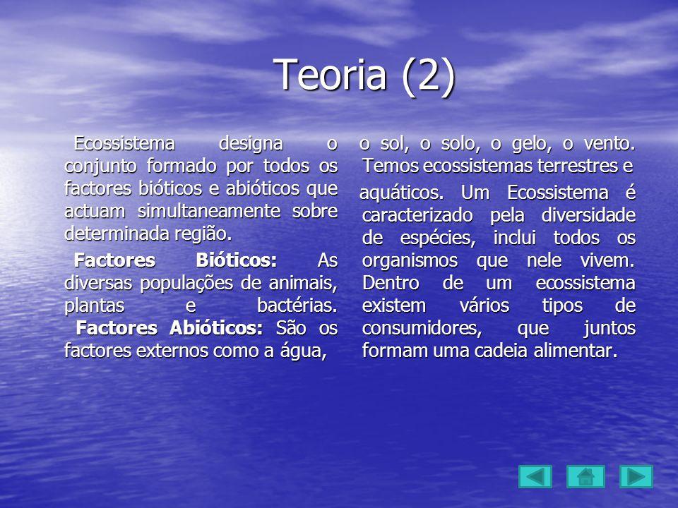 Teoria (2) Teoria (2) Ecossistema designa o conjunto formado por todos os factores bióticos e abióticos que actuam simultaneamente sobre determinada região.