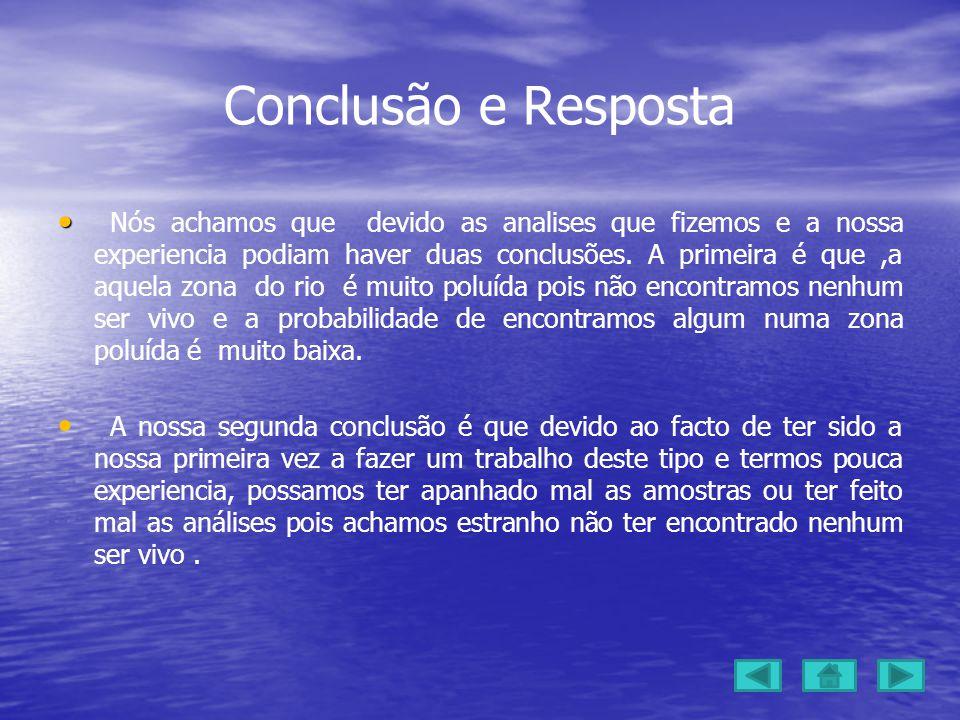 Conclusão e Resposta Nós achamos que devido as analises que fizemos e a nossa experiencia podiam haver duas conclusões.