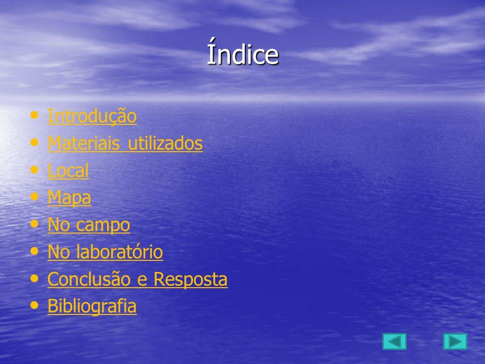 Trabalho realizado por : Filipe madeira-3263 8ºB Diogo Silva-3398 8ºB Bruno Casaca-3457 8ºB