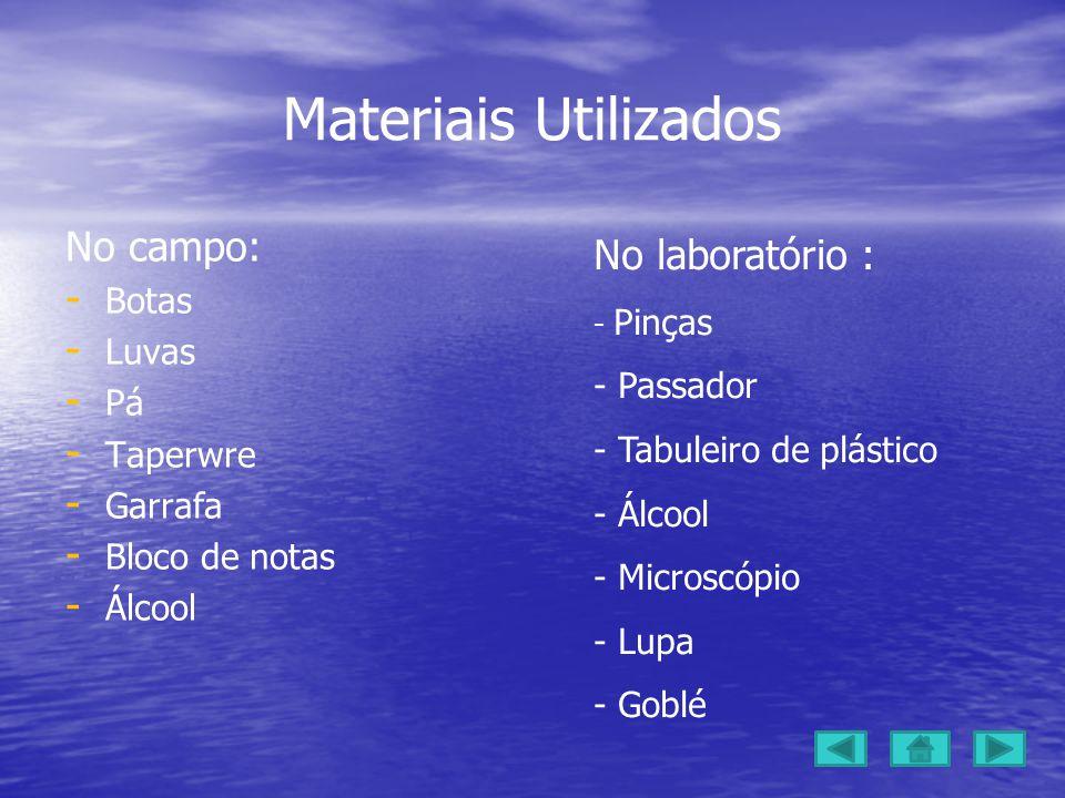 Materiais Utilizados No campo: - - Botas - - Luvas - - Pá - - Taperwre - - Garrafa - - Bloco de notas - - Álcool No laboratório : - Pinças - Passador - Tabuleiro de plástico - Álcool - Microscópio - Lupa - Goblé