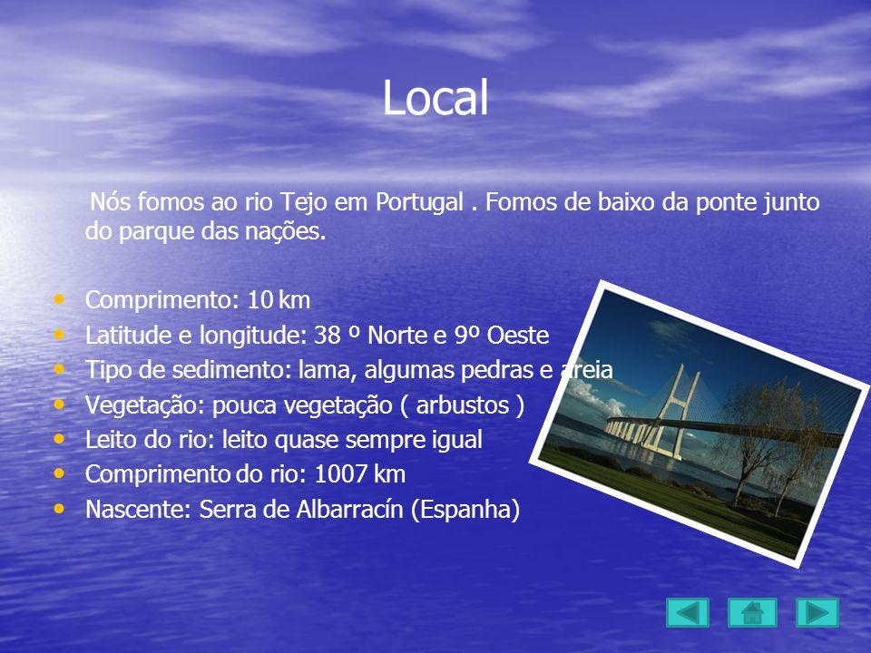 Local Nós fomos ao rio Tejo em Portugal.Fomos de baixo da ponte junto do parque das nações.