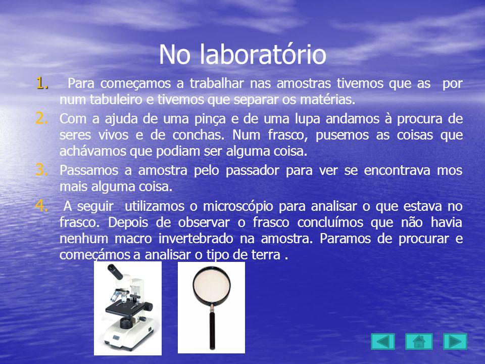 No laboratório 1.1.