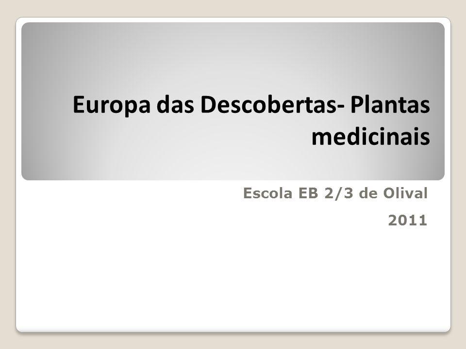 Europa das Descobertas- Plantas medicinais Escola EB 2/3 de Olival 2011