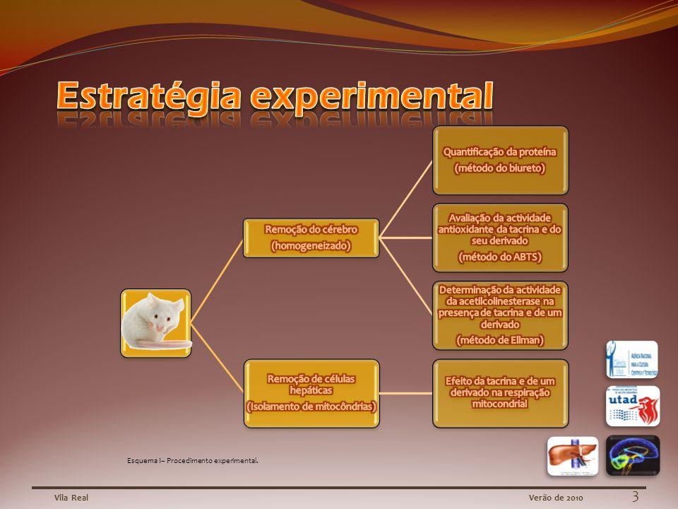 Esquema I– Procedimento experimental. 3