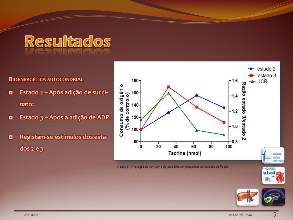 Vila RealVerão de 2010 Figura 2 – Avaliação do consumo de oxigénio em mitocôndrias isoladas de fígado.