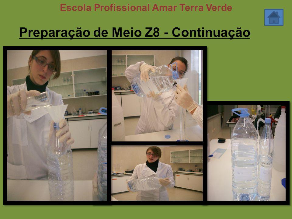 Preparação de Meio Z8 - Continuação Escola Profissional Amar Terra Verde